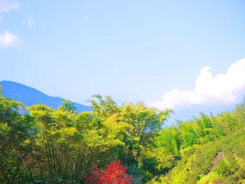 遠山與藍天白雲 | 青竹與紅葉 | 台21線新中橫公路 | 信義 | 南投 | RoundtripJp