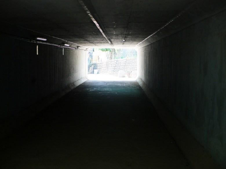 工業南路139B線道路下方涵洞 | 漳和撼龍步道櫻花秘境 | 前段賞櫻入口 | Zhang Heli | Nantou | 巡日旅行攝
