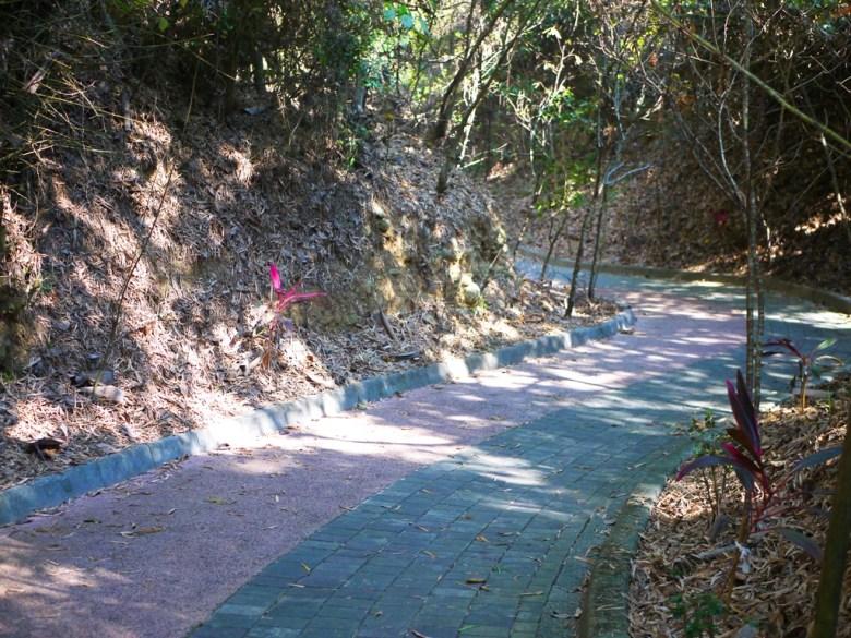 舒適平坦的防滑步道 | 漳和撼龍步道 | 漳和 | 南投 | Zhang Heli Dragon Trail | RoundtripJp