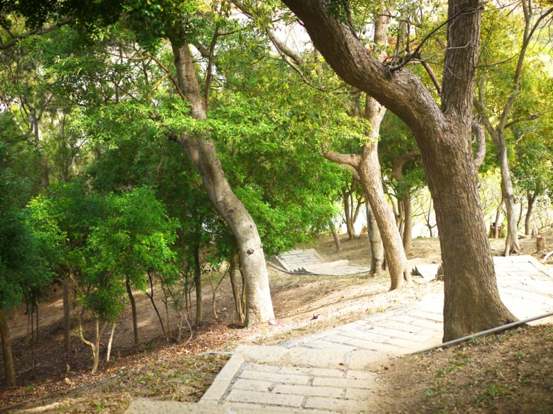 滿滿綠樹環繞 | 綠意盎然 | 蜿蜒而平緩的古道 | Hushanyan | Huatan | Changhua | RoundtripJp