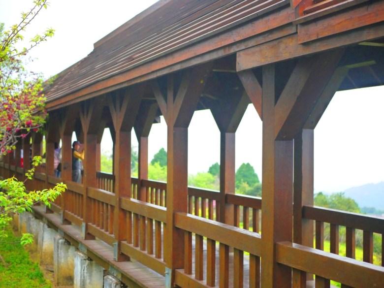 觀景迴廊 | 木頭的溫潤步道 | 臺灣旅人 | 南投鳳凰自然教育園區 | 鹿谷 | 南投 | 巡日旅行攝