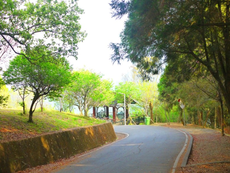車道 | 綠樹 | 金龍山觀景臺 | 魚池 | 南投 | ユーチー | Yuchi | Nantou | 巡日旅行攝