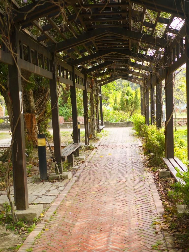 紫藤花隧道 | 山腳國小 | 苑裡 | 苗栗 | ユエンリー | ミアオリー | RoundtripJp