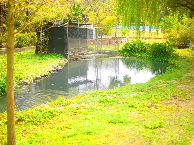 綠色自然 | 生態池 | 山腳國小 | 苑裡 | 苗栗 | ユエンリー | ミアオリー | RoundtripJp