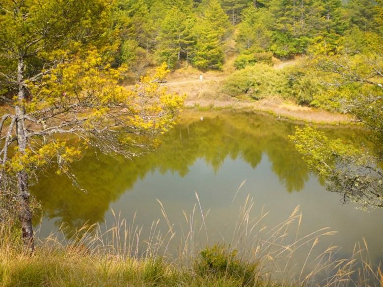 鳥瞰天池 | 臺灣旅人 | 高山上的池水 | 大雪山國家森林遊樂區 | 和平 | 台中 | RoundtripJp