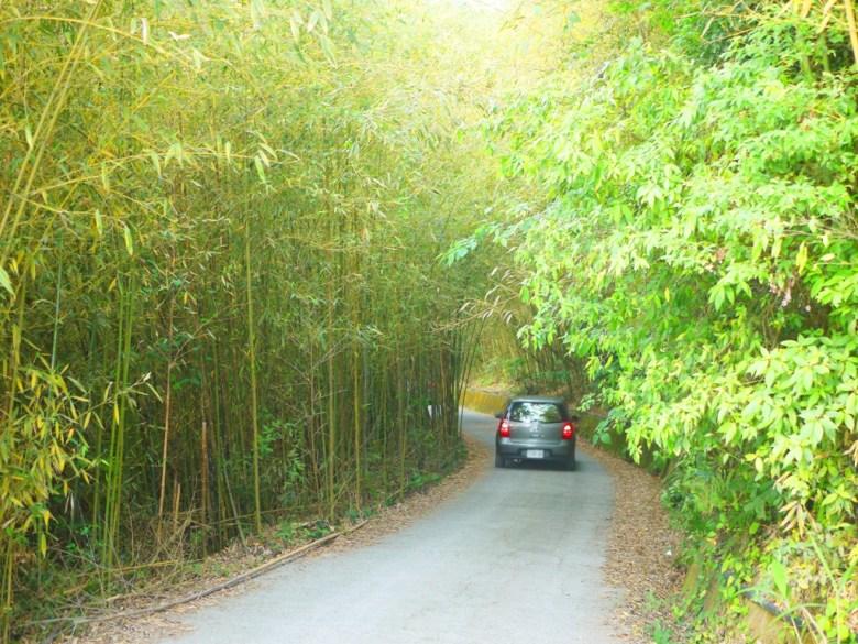 免費停車場前道路 | 往前往洗水坑豆腐街方向 | 泰安 | 苗栗 | 巡日旅行攝