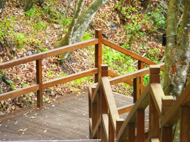好漢坡步道 | Strongman Slope | 奧萬大國家森林遊樂區 | レンアイ | ナントウ | 巡日旅行攝