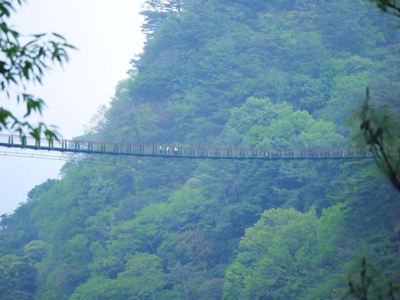 彷彿在雲端的吊橋 | 高山上的吊橋 | 壯觀高聳 | 奧萬大國家森林遊樂區 | レンアイ | ナントウ | RoundtripJp