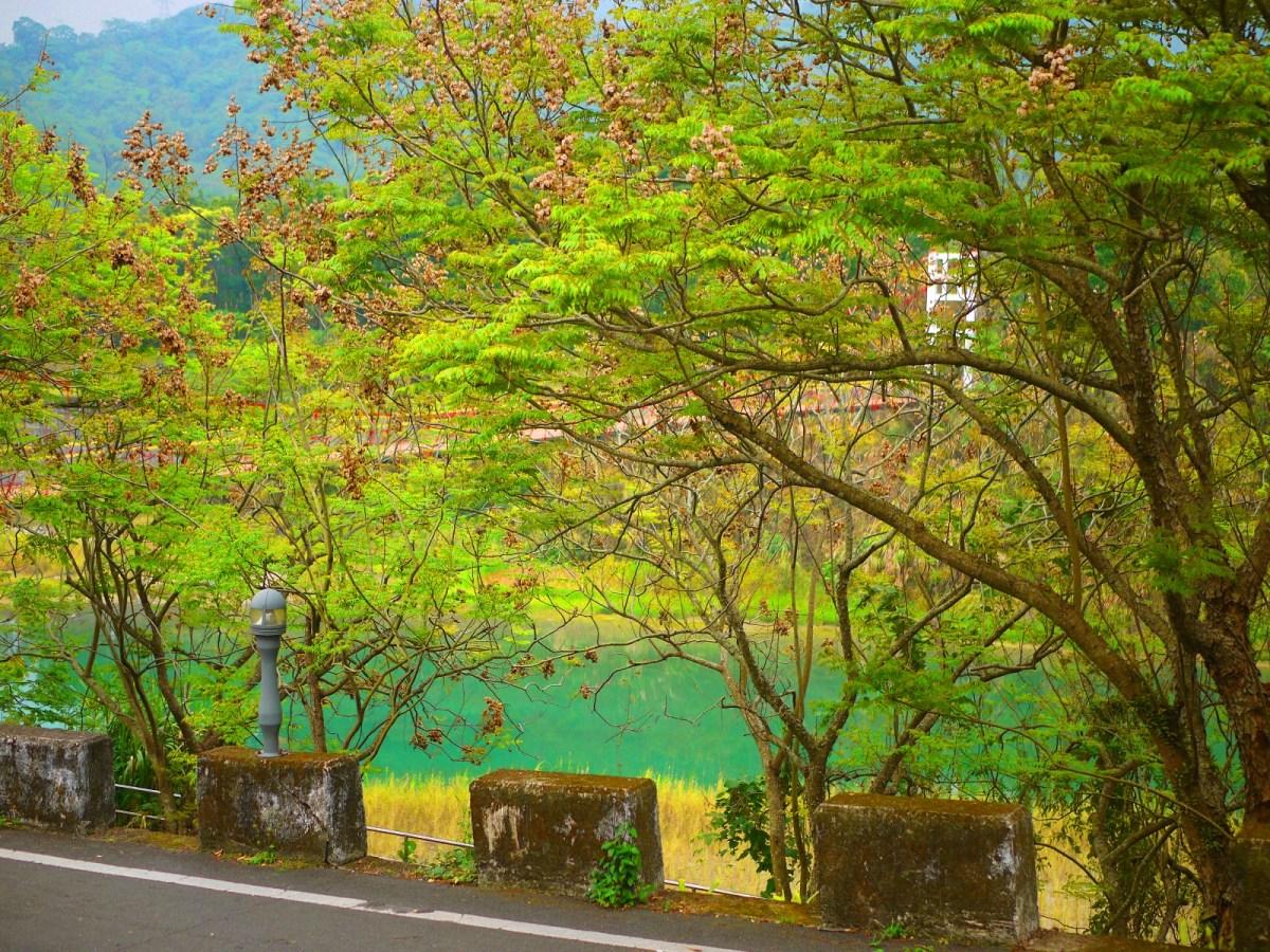 桶頭吊橋一隅   入口處小路   被大自然包圍   青綠色溪流   Takeyama   Zhushan   Nantou   巡日旅行攝