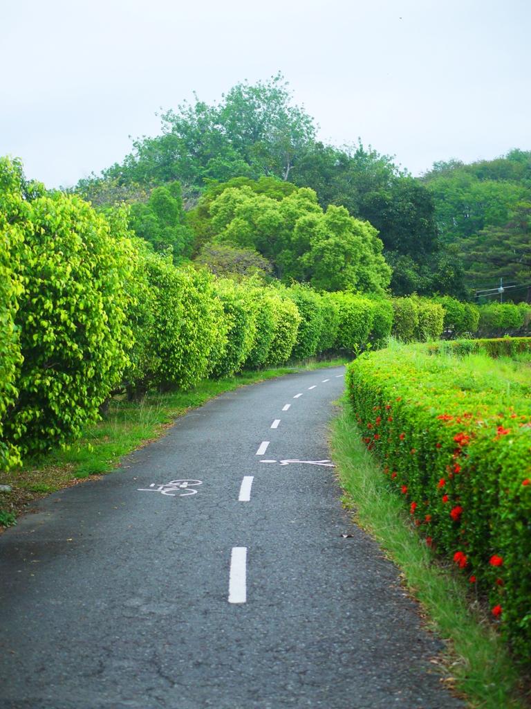 環埤步道 | 自行車車道 | Hu-Tou Pei | 虎頭埤風景區內 | シンホワ | たいなんし | RoundtripJp