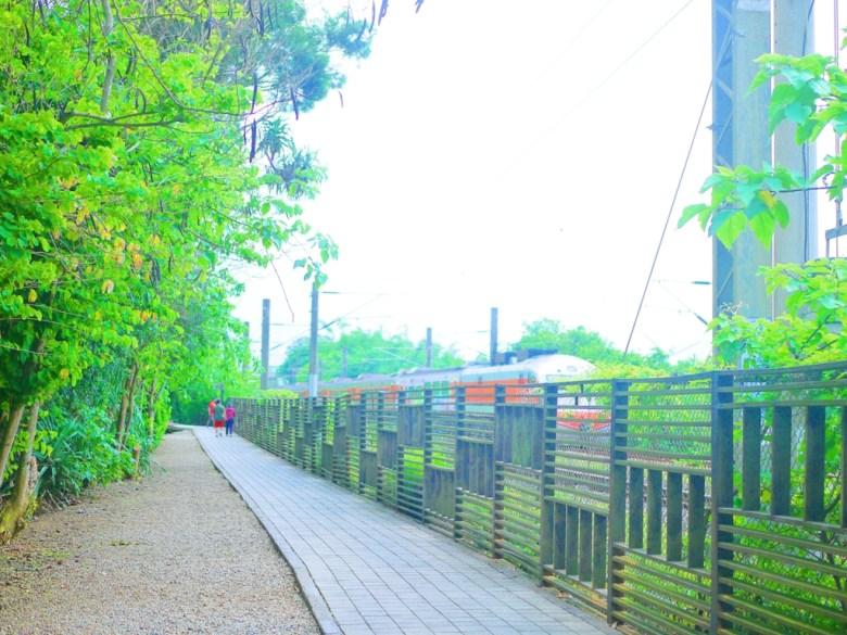 往崎頂觀景台方向 | 台鐵列車 | 悠閒散策 | 台灣旅人 | 火車之美 | チーディン | ジューナン | ミアオリー | RoundtripJp