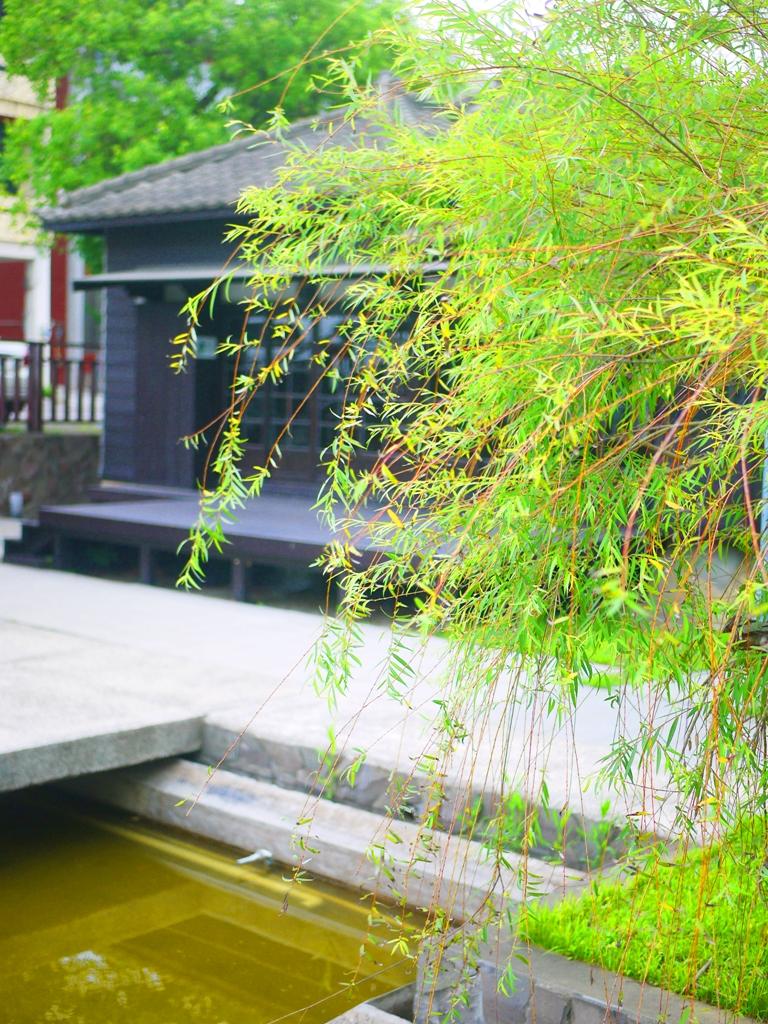 垂柳與日式建築之美   日本京都鴨川感   日本味   造橋日式驛長宿舍   ザオチアオ   ミアオリー   巡日旅行攝