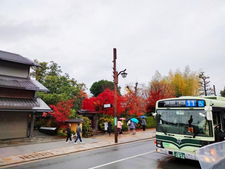 日本巴士 | 京都 | 嵐山 | 日本人 | 台灣旅人 | 國外旅人 | 楓葉 | RoundtripJp