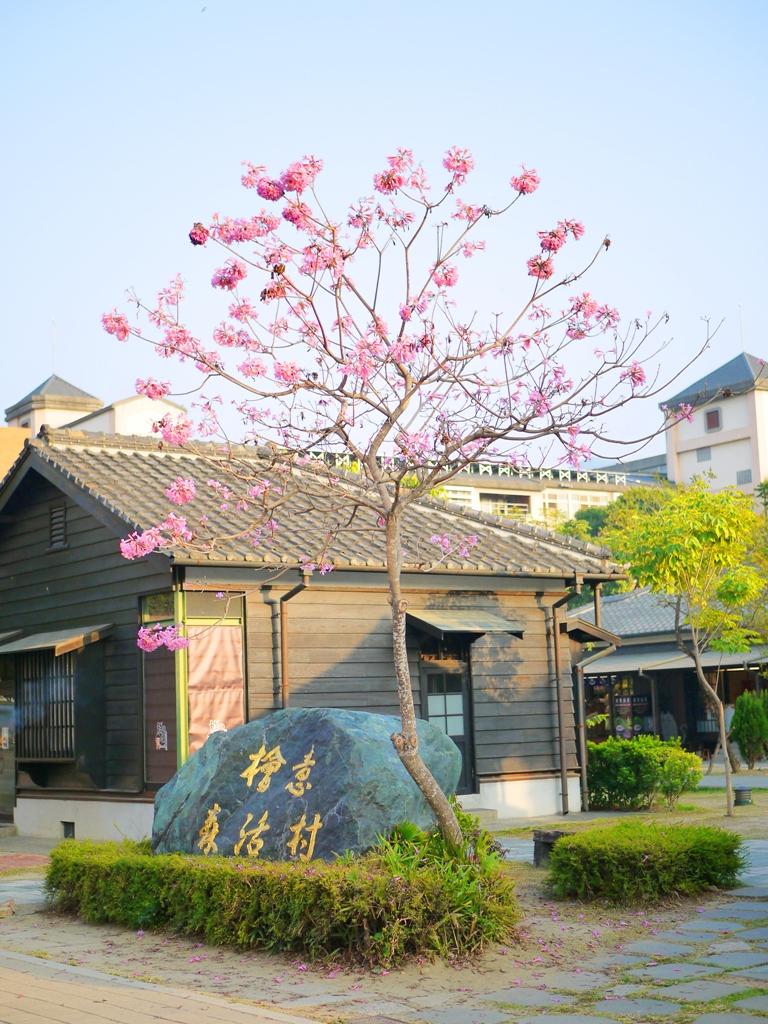 檜意森活村石碣   洋紅風鈴木   日式建築   檜意森活村   Hinoki Village   とう-く   かぎし   巡日旅行攝