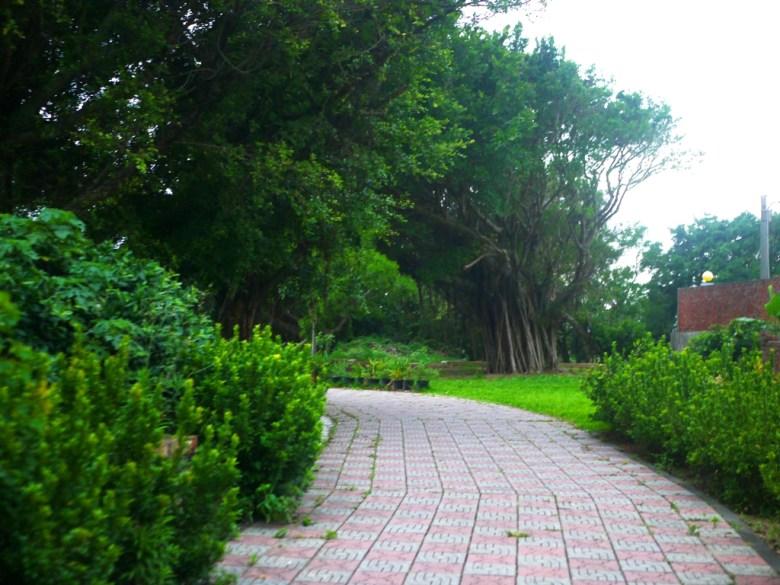 通往濱海步道的田間小路 | 隱世秘境感 | 海邊小鎮 | 自然清新 | 新埔 | 苗栗 | シンプー | ミアオリー | RoundtripJp