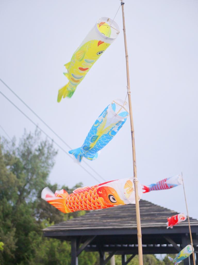 鯉魚旗 | 日本味 | 木造涼亭 | 濱海步道沿途景緻 | 令人放鬆 | 新埔 | 苗栗 | シンプー | ミアオリー | RoundtripJp