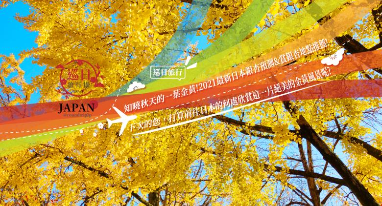 巡日旅行   知曉秋天的一葉金黃!2021最新日本銀杏預測&賞銀杏地點推薦!