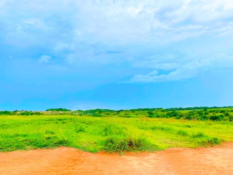 青青大草原   舒適的海風   ホンチュン   ピンドンけん   Hengchun   Pingtung   Wafu Taiwan   巡日旅行攝   RoundtripJp