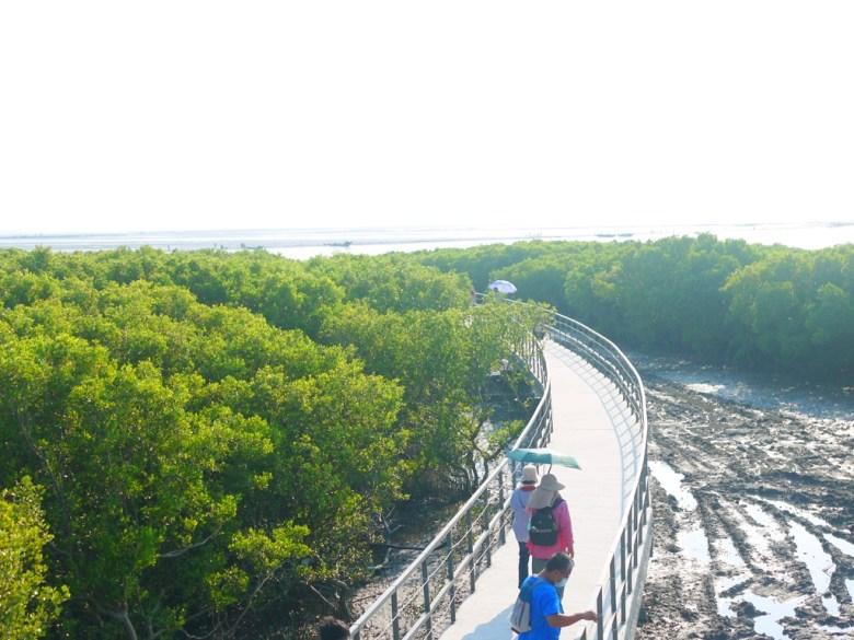 貼近自然   紅樹林步道   潮間帶旅遊   海空步道   台灣旅人   ファンユエン   ほうえん   ジャンホワ   しょうか   Wafu Taiwan   巡日旅行攝   RoundtripJp