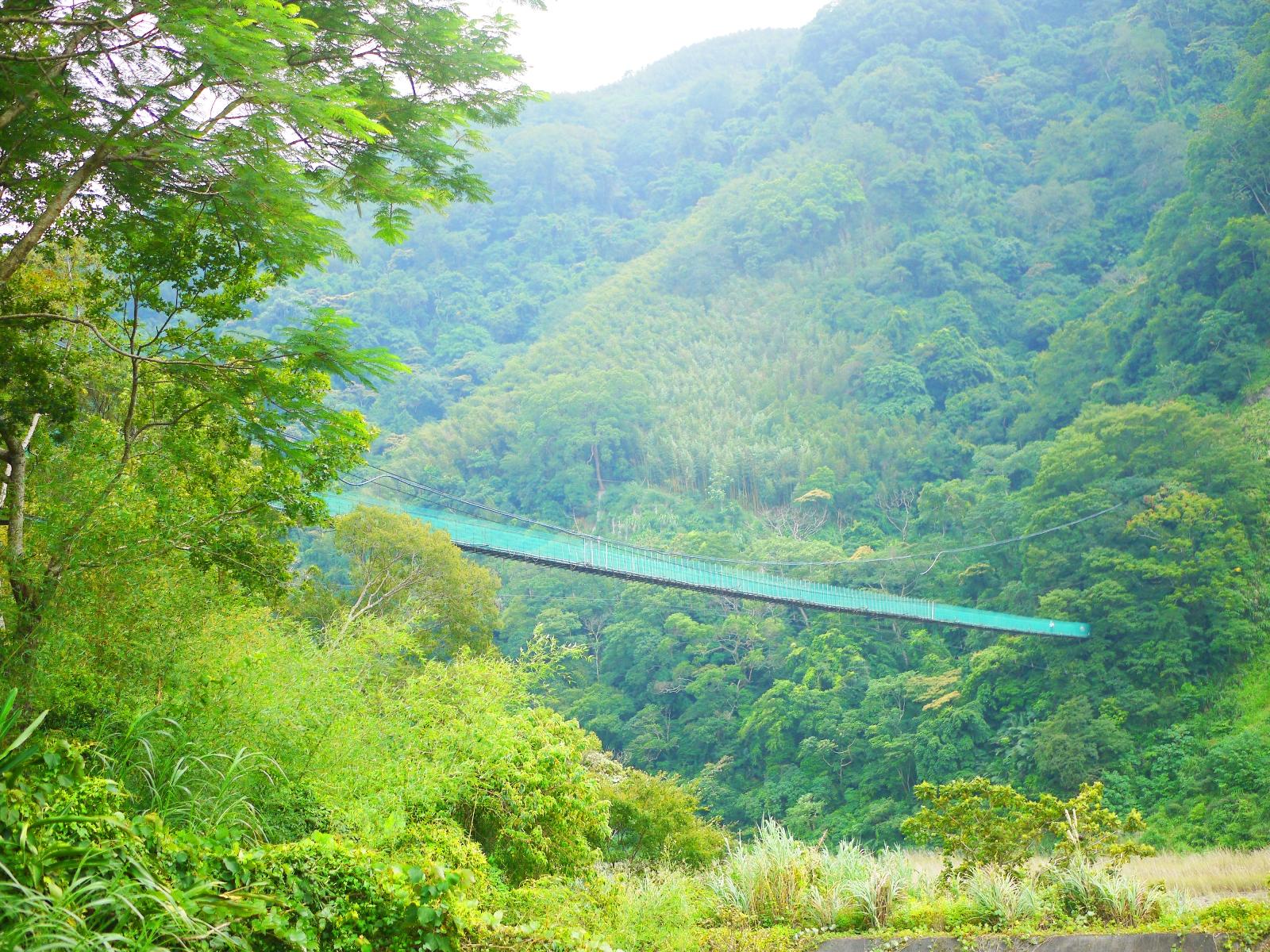 從停車處遠眺象鼻吊橋 | 險峻而高聳 | 秘境吊橋 | 群山環抱 | 千兩山 | Taian | Miaoli | 和風臺灣 | 巡日旅行攝 | RoundtripJp