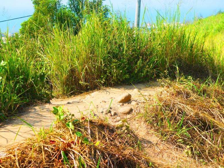 初階版觀賞位置的小土丘 | 由上俯瞰心形公路 | 浪漫公路 | 少女心 | Tongxiao | Miaoli | 和風巡禮 | 巡日旅行攝 | RoundtripJp