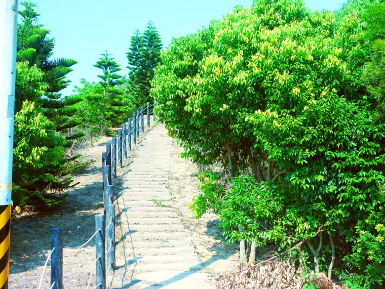 嶺頂瞭望臺停車場兩側步道   通往山頂   免費停車場   Tongxiao   Miaoli   和風臺灣   巡日旅行攝   RoundtripJp