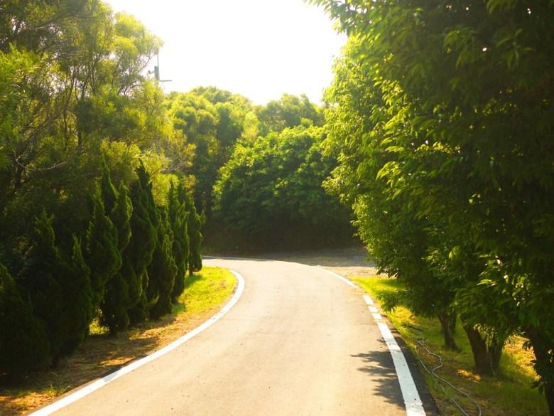 嶺頂福德祠前涼亭前道路   山路的終點   山路狹小   路面坡度高   トンシャオ   ミアオリー   Wafu Taiwan   巡日旅行攝   RoundtripJp