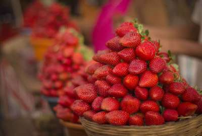 routemate mahabaleshwar strawberry