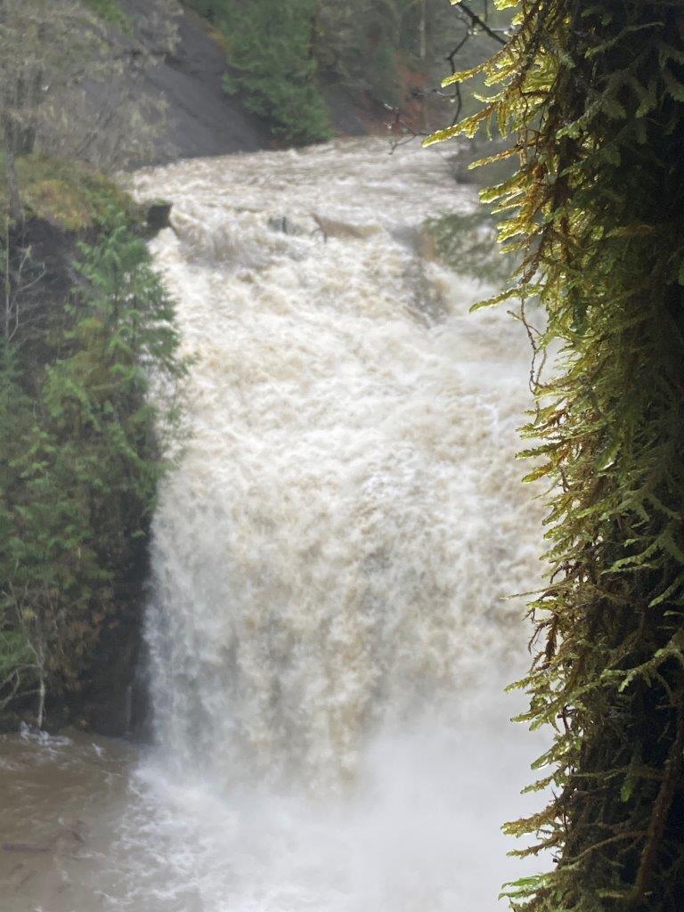 Trent Falls in Cumberland, British Columbia