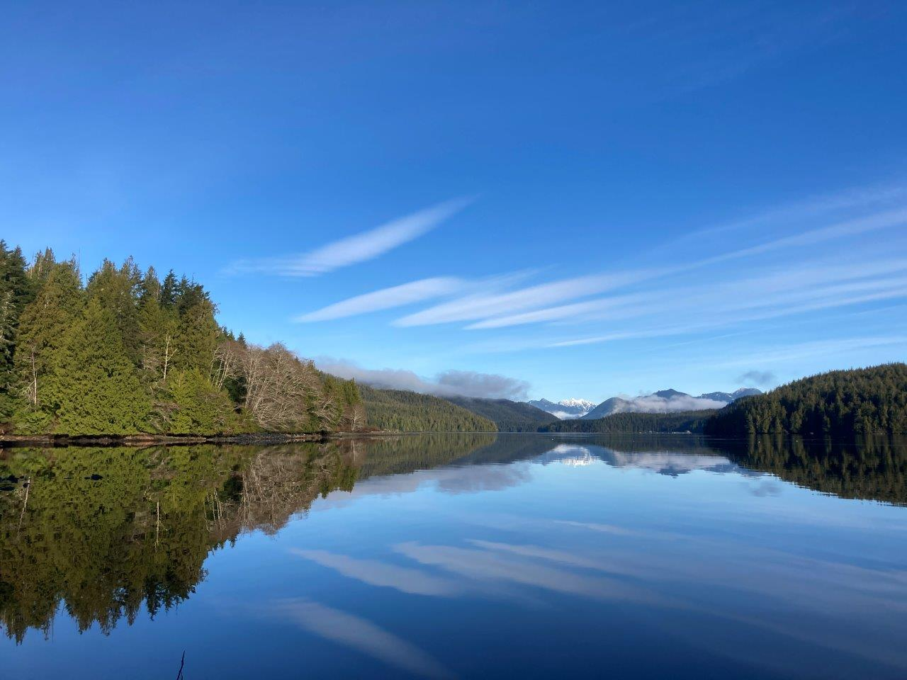 Grice Bay BC reflection