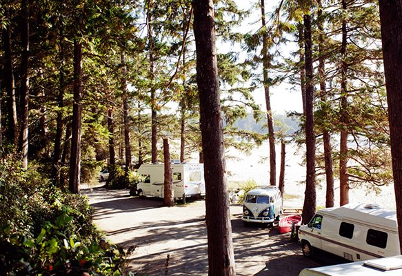 Small RVs and van camping in Tofino with tall trees and the beach in the background