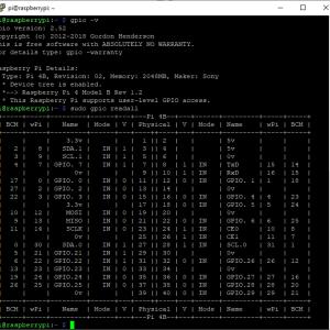 gpio readall Oops – unable to determine board type… model: 17