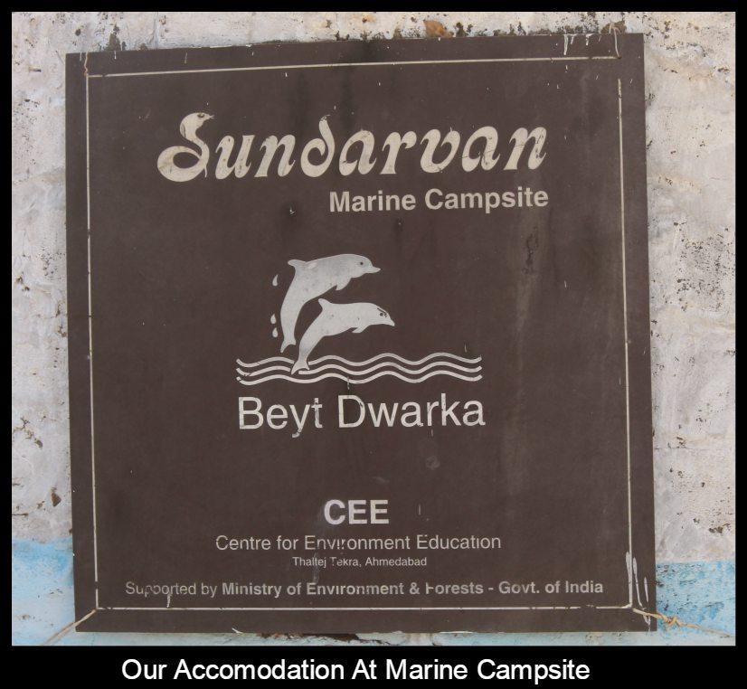 sundarvan marine campsite