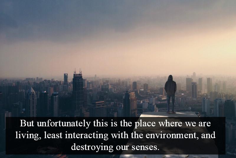 human senses