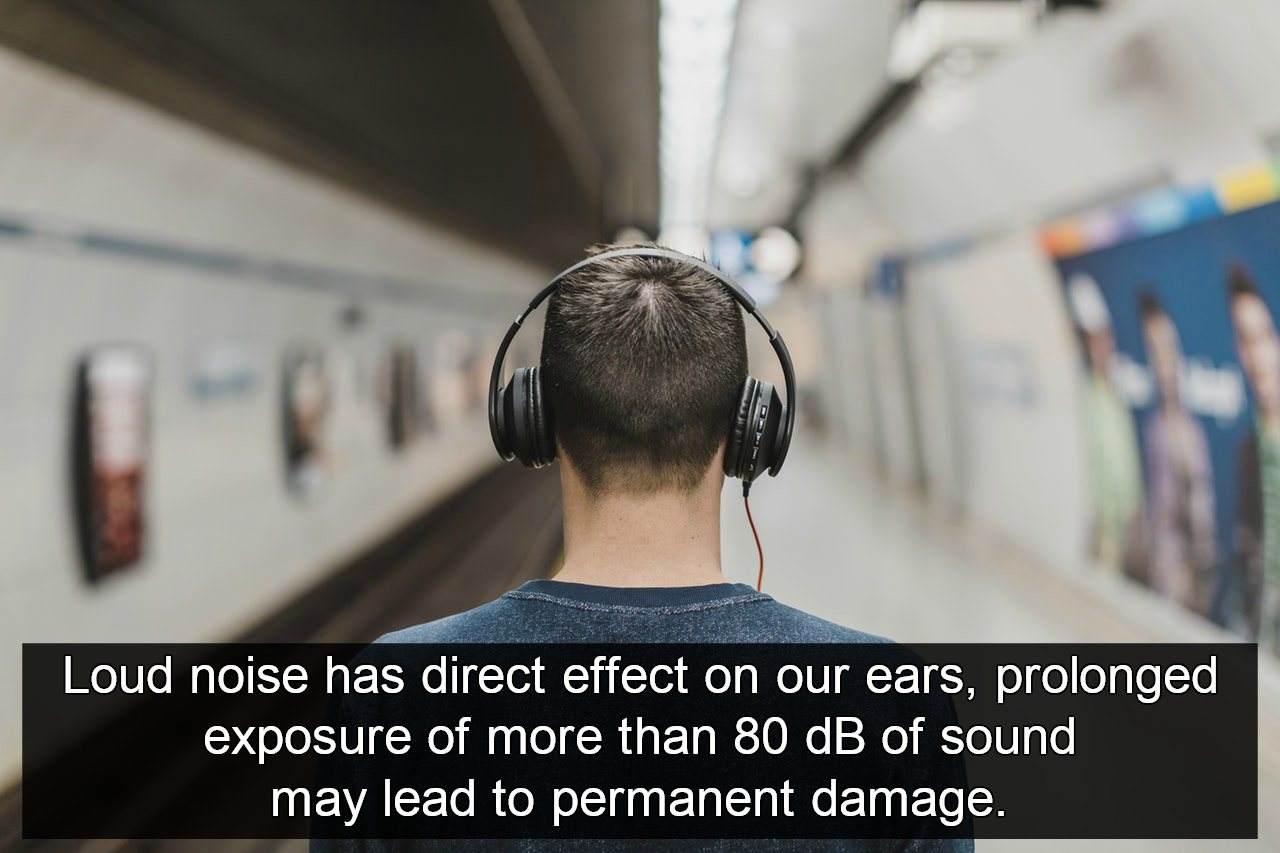 roverbeing noise pollution