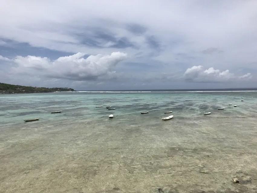 Nusa Lembongan Seaweed farms