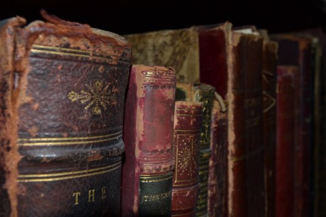 Beautiful leather bound book spines