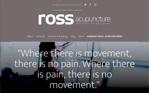 acupuncture web design updates oakland
