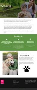 castro valley nonprofit website design