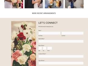 small business web design berkeley 1