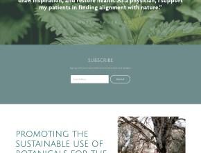 squarespace website design cheap oakland