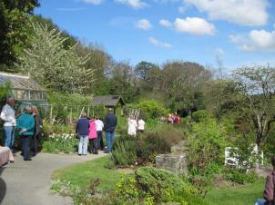 Gilfach garden