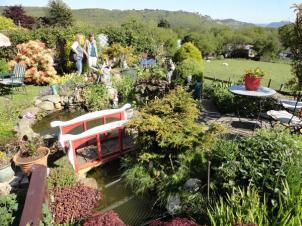 tynygroes gardens 3