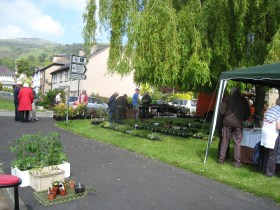 Five Acres Nursery stall at the 2016 Rowen Open Gardens