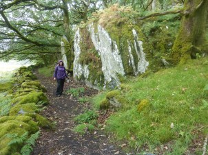 Ancient path to Ty Mawr