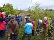 apple pruning workshop at a member's gardenwith Ian Sturrock