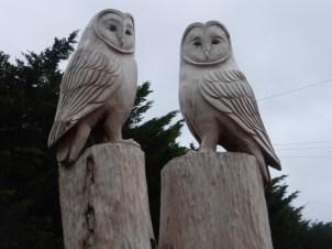 Wise owls at Ysgol Aberconwy, carved by Edward Parkes