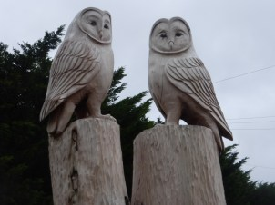 Wise owls at Ysgol Aberconwy, carved by Edward Parkes