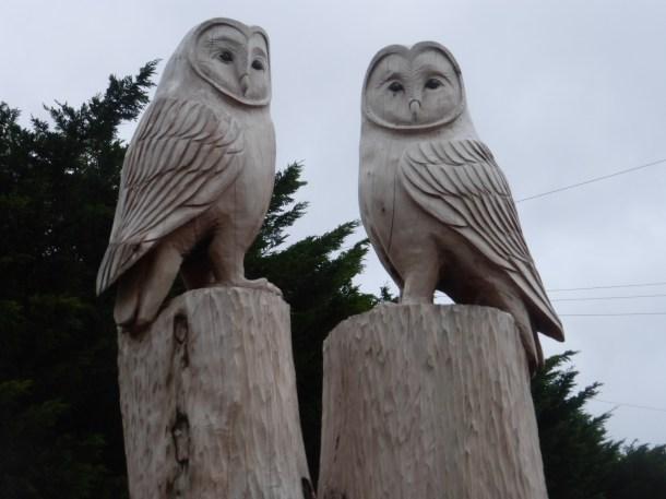 Wise owls at Ysgol Aberconwy by Edward Parkes