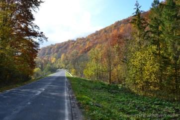 W drodze do Ustrzyk Górnych